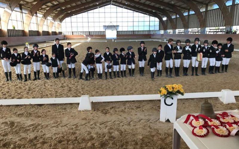 Dressage Póneis: Atletas de Oeiras sobem ao pódio