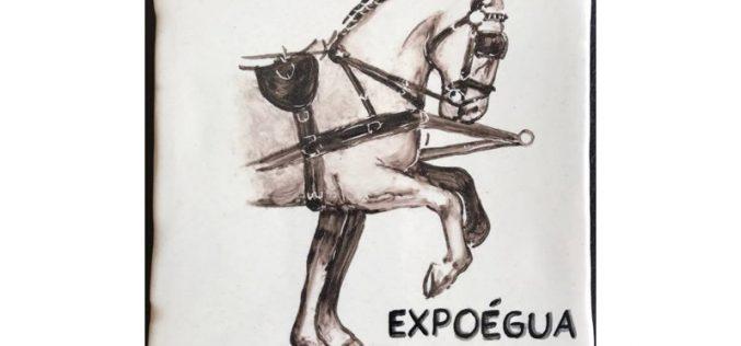 Atrelagem em destaque na Expoégua 2017