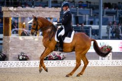 A Royal victory at Royal Windsor Horse Show