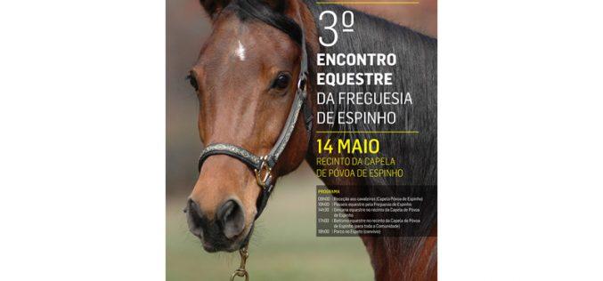 3º Encontro Equestre da Freguesia de Espinho
