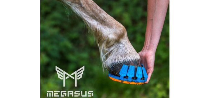 "Fim das ferraduras… ""Horserunners"" (VÍDEO)"