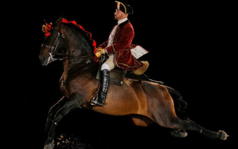 Escola Portuguesa de Arte Equestre inaugura novos espaços