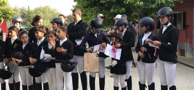 Troféu Dressage Póneis: Resultados 3ª Jornada – CHCE