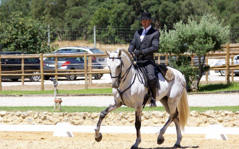 Moita acolheu a II Jornada do Campeonato Regional de Equitação de Trabalho