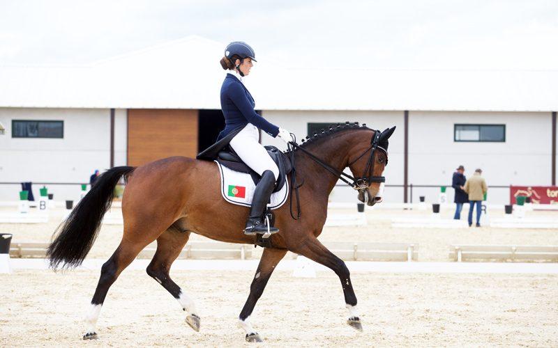 3 Portugueses inscritos no Mundial de Cavalos Novos (Dressage) – Holanda