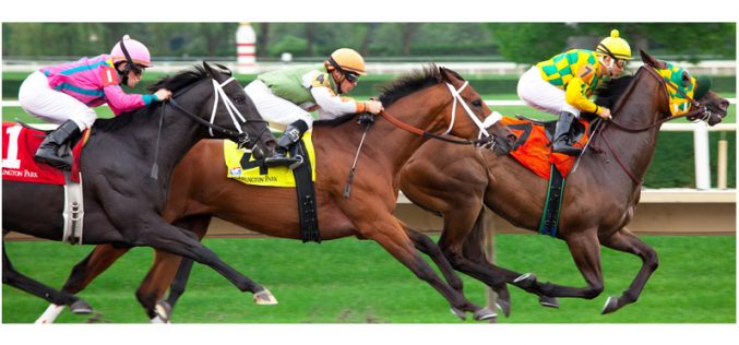A evolução das corridas de cavalos