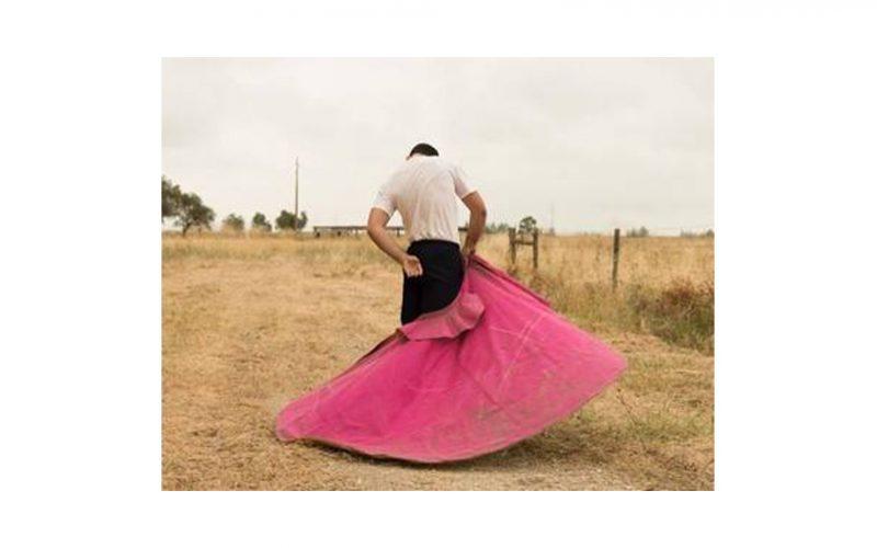 Tauromaquia: Fotógrafo português recebe galardão em Los Angeles