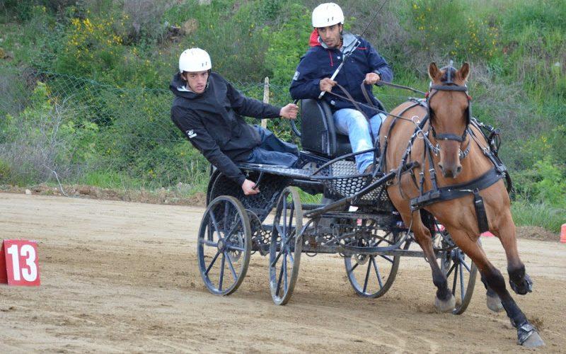 Ponte de Lima: Feira do Cavalo recebe a 4º Jornada do Combinado de Maratona