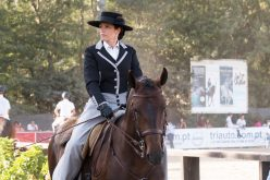 Primeira Edição dos Jogos Equestres de Ponte de Lima excede expectativas