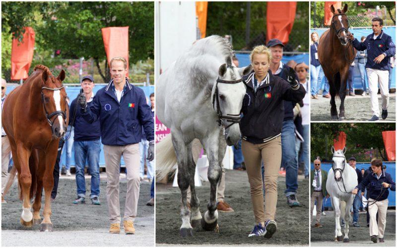 Campeonato da Europa de Dressage 2017 – 2 Cavalos reprovados na 1ª inspecção veterinária (Actualizada)