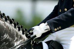 Campeonato de Portugal de Dressage Open 2017 – Inspecção Veterinária