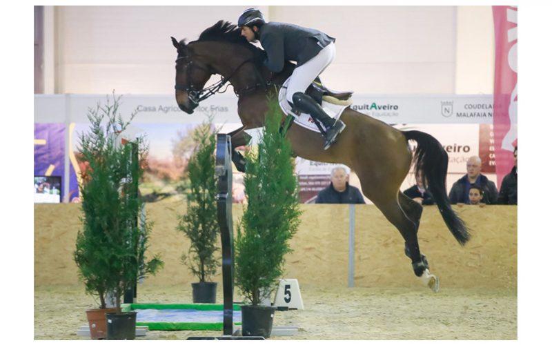 CSN-B Coimbra: Hugo Carvalho sofre aparatosa queda de cavalo