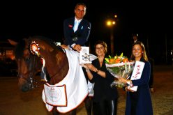 Julien Epaillard and Safari d'Auge with copy-paste victory in Seacoast Prize at Brussels Stephex Masters