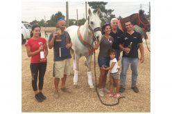 Resultados: Campeonato Nacional de Cavalos Novos de Raides (CNCJ)