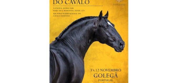 Prepare-se: vem aí a Feira Nacional do Cavalo na Golegã 2017