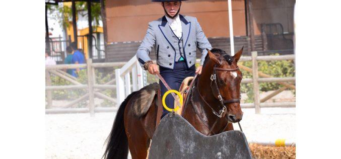 Resultados: Final do Campeonato Regional Centro de Equitação de Trabalho 2017