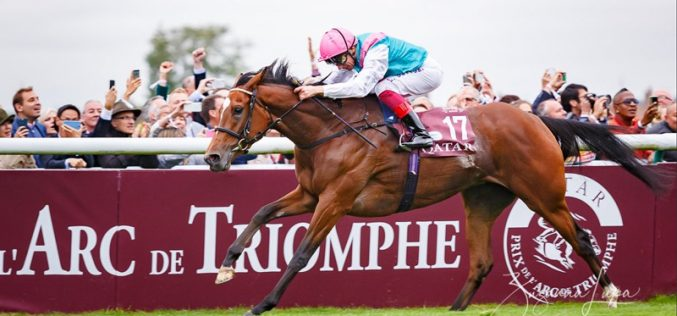 Enable (GB) vence 96ª edição do Qatar Arc de Triomphe! (VÍDEO
