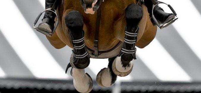 Cavaleiros de obstáculos em competições internacionais esta semana