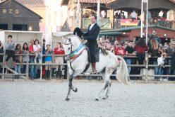 Feira Nacional do Cavalo 2017: «Homero» Campeão dos Campeões