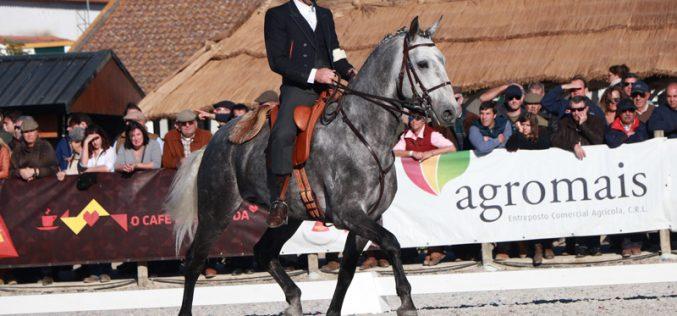 Feira Nacional do Cavalo 2017: 55 Exemplares no Concurso de Modelo e Andamentos