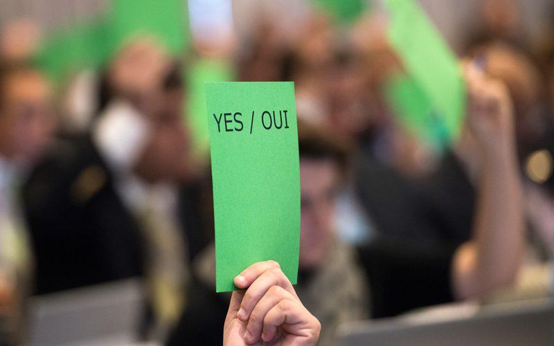 Assembleia Geral da FEI – Saiba algumas novidades…