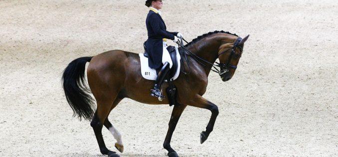 CDI-W Lyon: Isabell Werth montou Emilio para a vitória no Grande Prémio: Daniel Pinto em sétimo (VÍDEO)