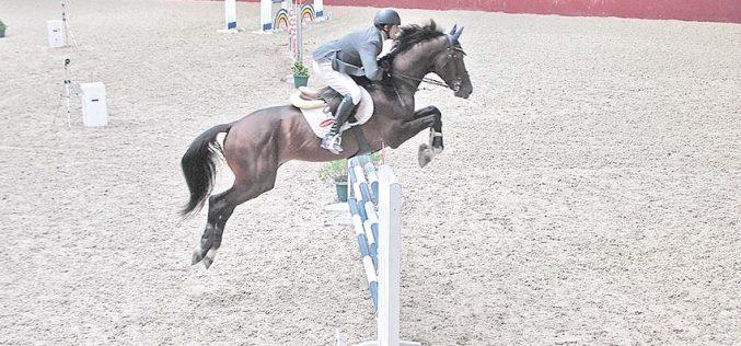 1º Torneio Equestre de Outono: Hugo Carvalho conquista as categorias Ouro e Platina