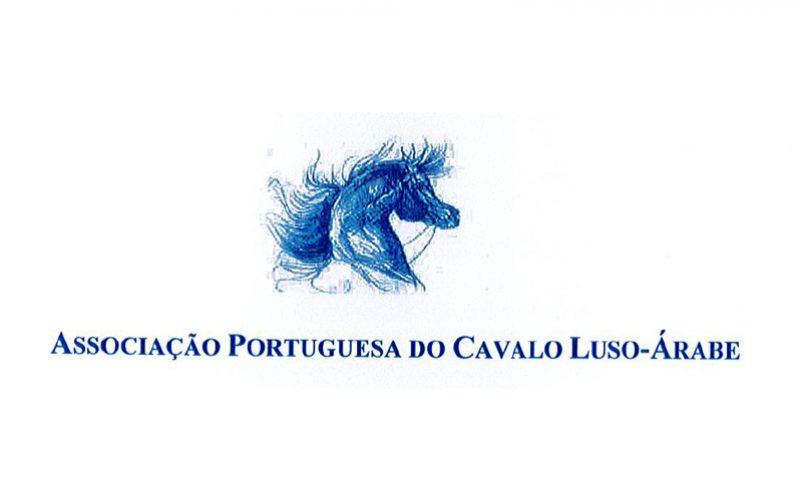 Assembleia Geral Electiva da Associação Portuguesa do Cavalo Luso-Árabe e nova Direcção