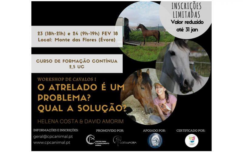 CPCA promove workshop 'E quando os cavalos não entram no atrelado?'