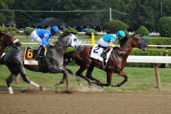 Futuro das Corridas de Cavalos: mais modernidade e mudanças necessárias