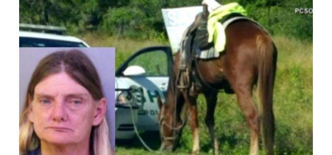 Mulher andava a cavalo com álcool a mais…