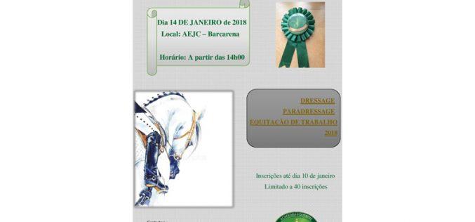 15º Concurso Especial de Dressage, Paradressage e Ensino de Equitação de Trabalho