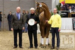 Stakkato- and Weltmeyer-Prize: Six young stallions honoured