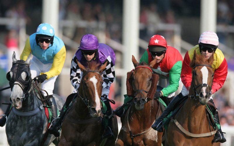 Apostas em corridas de cavalos avançam até Junho de 2019