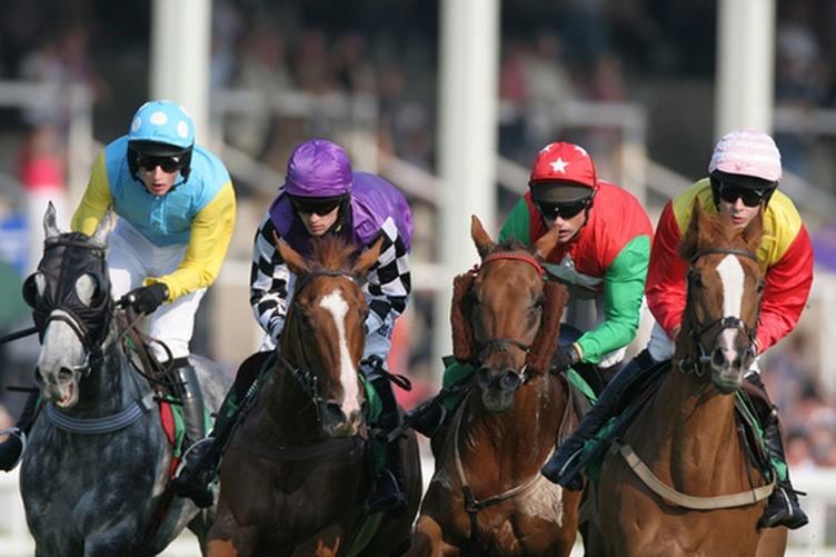 Apostas corridas de cavalos portugal