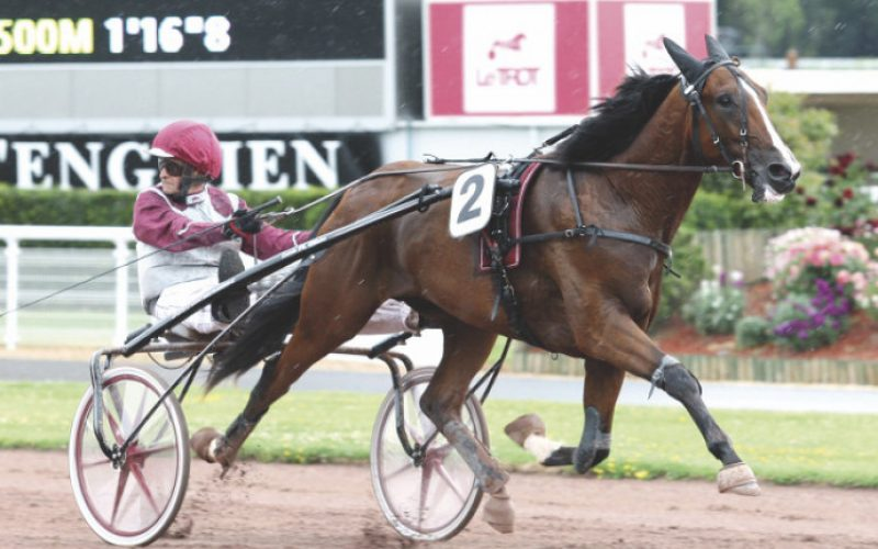 Thanks to three giants in French trotting…