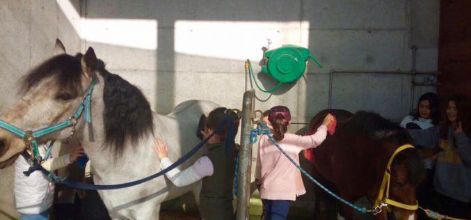 Campos de férias da Páscoa no Pony Club do Porto