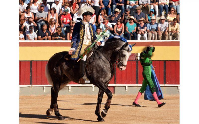 «Alcochete», «Gaiato» e «Girassol» os melhores cavalos Lusitanos de Toureio