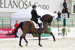 CDI3* Sevilha: Dois pódios para Yoann Pinto em Espanha
