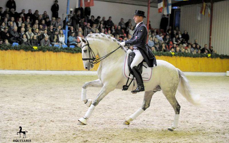 CDI3* Ebreichsdorf: Sascha Schulz e Dragão das Figueiras brilham no Grande Prémio Freestyle