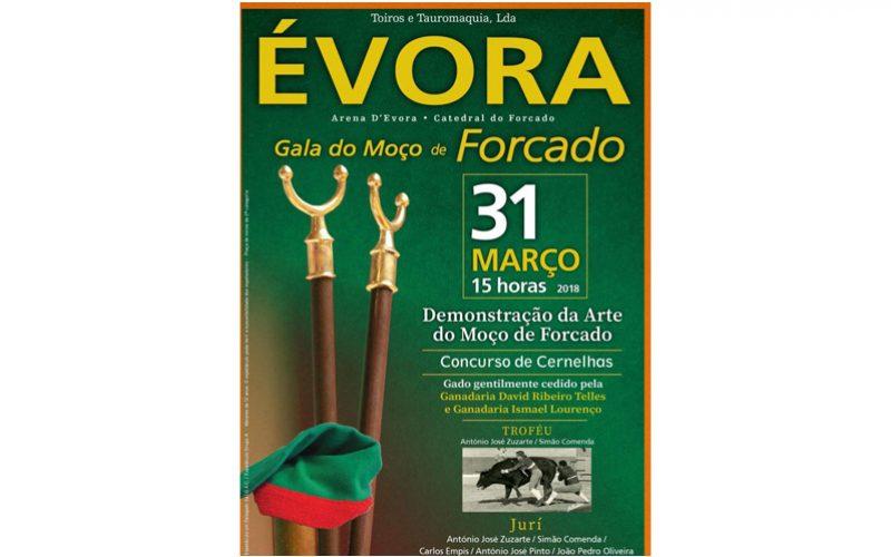 Forcados em festa na arena de Évora