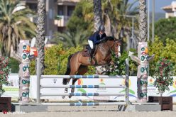Great Britain in full control of MET IV Young Horse Finals