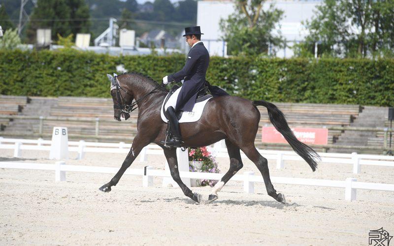 CDI Hagen: Isabell Werth Imparável – Luís Principe termina em 12º lugar