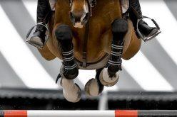 75 Cavaleiros inscritos em eventos internacionais de Saltos