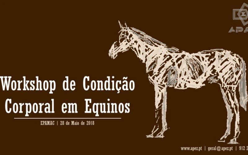 Workshop – Condição Corporal em Equinos