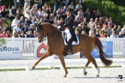 FEI Dressage Nations Cup: A 5 star Swedish team at Compiègne!