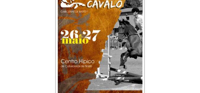 VIII Feira do Cavalo de Cabeceiras de Basto | 26 e 27 de Maio