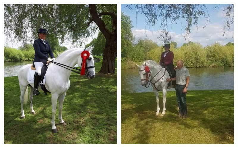 Royal Windsor Horse Show: Cavalos da Coudelaria Monte da Tramagueira no pódio