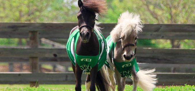 The FEI World Equestrian Games™ Tryon 2018 Announces the Official Mascots of the Games