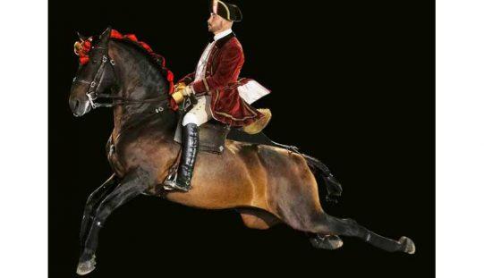 Presidente da República visita Escola Portuguesa de Arte Equestre